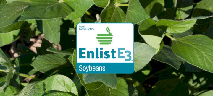 Stine Seed Company Offers Extensive Lineup of Enlist E3™ Soybeans for 2019
